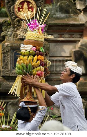 BALI - JANUARY 14: Village woman loads the offering of food basket on her head in a procession to the village temple January 14, 2010 in Bali, Indonesia.
