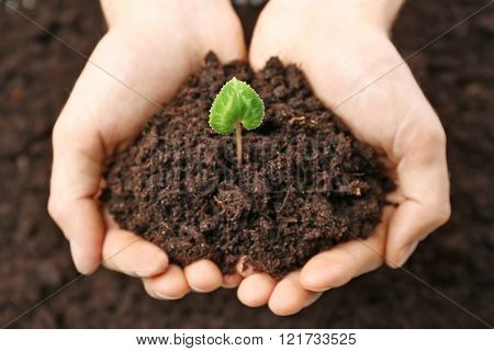 Male hands holding soil and plant on black background