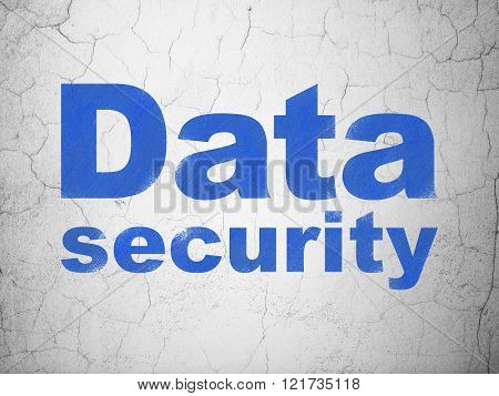 Privacy concept: Data Security on wall background