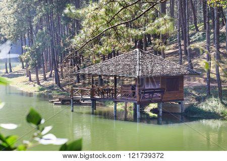 House Near Lake And Pine Trees