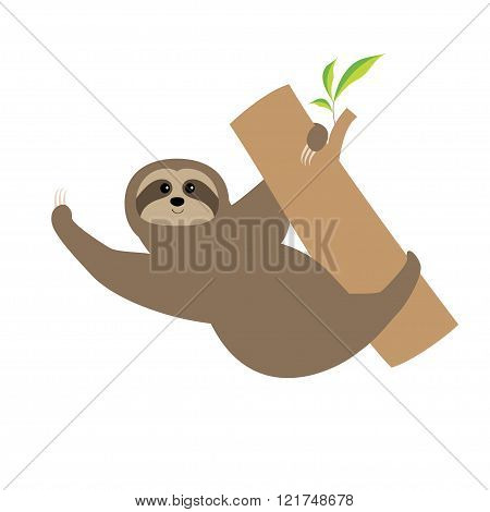 Sloth. Tree Branch Cute Cartoon Character. Wild Joungle Animal Collection. Baby Education. Isolated.