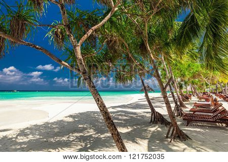 Beach beds in the shade of palm trees on tropical white sand beach in Maldives