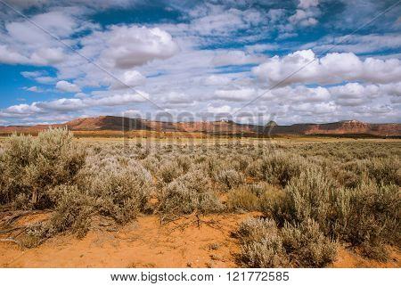 Northern Arizona Desert, USA
