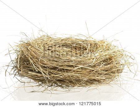 Empty Birds Nest