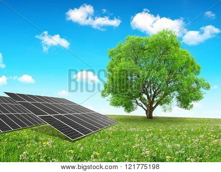 Solar energy panels and tree on meadow. Clean energy.
