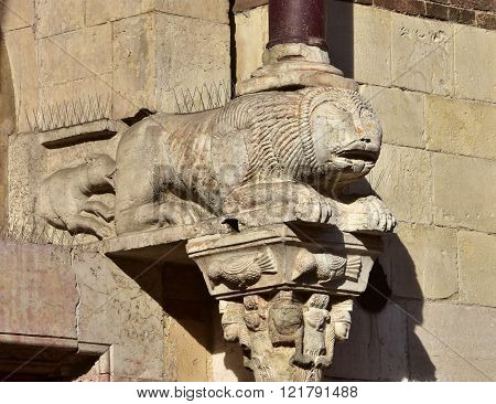 Dog Bites A Lion Capital From Verona Cathedral Medieval Side Portal