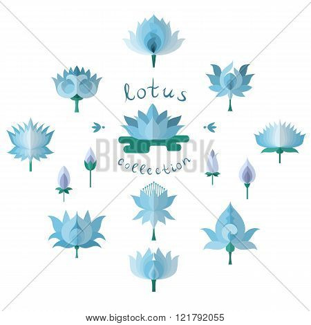 Blue Lotuses Set