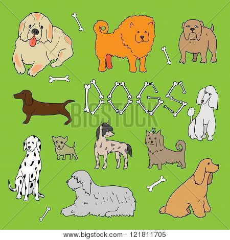 Dogs. Doodle set in vector isolated on a green background.