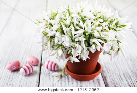 Bouquet Of Snowdrops And Easter Eggs