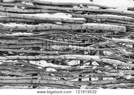 Snow-covered Wattle Fence From Wooden Branches Of Monochrome Tone