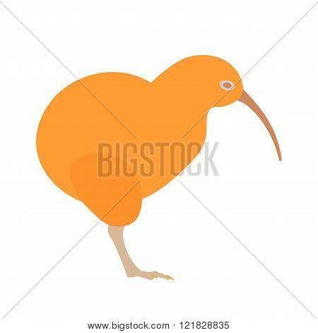 Kiwi bird vector illustration. Kiwi bird on white background. Kiwi bird. Kiwi bird illustration. Kiw
