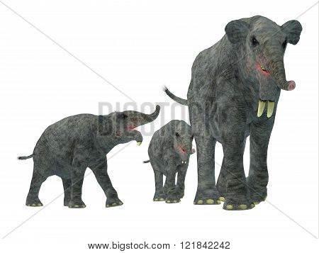 Deinotherium was an enormous land mammal that lived in Asia Africa and Europe during the Miocene to Pleistocene Periods. poster