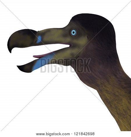 The Dodo is an extinct flightless bird that lived on Mauritius Island in the Indian Ocean.