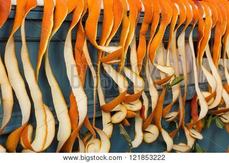 oranges peels hanging from a juice vendor's cart in the Kasbah Les Oudaias in Rabat, Morocco