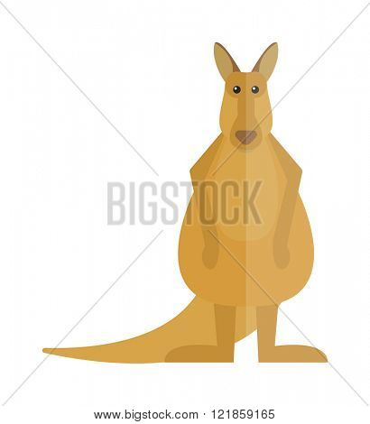 Wildlife kangaroo australia cartoon mammal and kangaroo cartoon character vector. Cute kangaroo cartoon australia animal flat vector illustration.