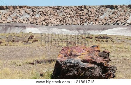 Petrified Wood In Petrified Forest National Park