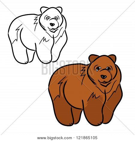 Brown Bear 1 (two Contours)
