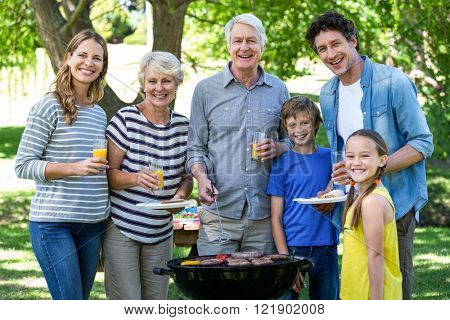 Family having a barbecue in a park