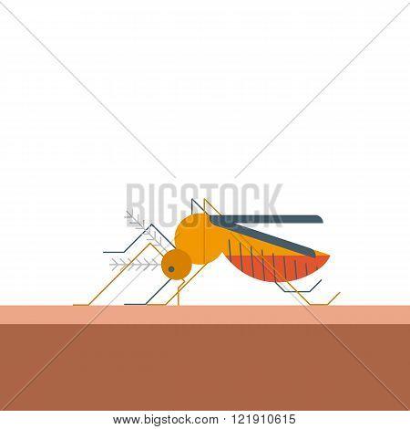 Mosquito Bites Skin