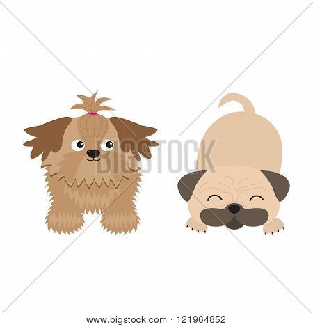 Shih Tzu and pug mops dog set. Isolated. Flat design. Vector illustration