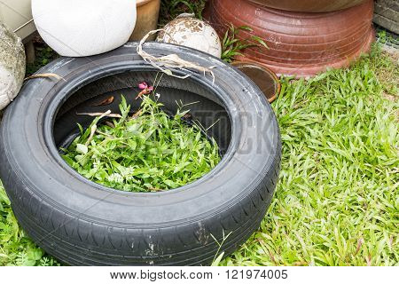 Used Tyres Potentially Store Stagnant Water And Mosquitoes Breeding Ground