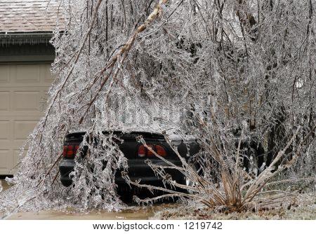 Car Under Ice Horizontal