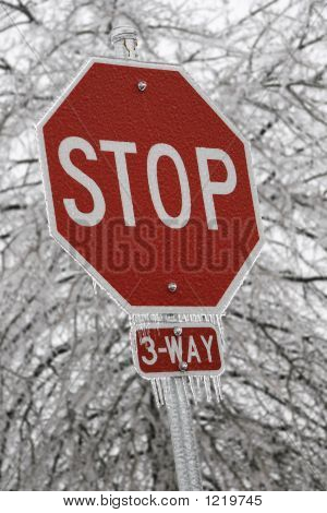 Icy Stop Sign