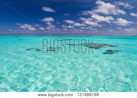 The gorgeous turquoise transparent water of the Aitutaki lagoon spotted by shallow coral reef. Uncontaminated environment in the Aitutaki atoll Cook Islands South Pacific Ocean.