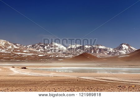 South America, Bolivia expedition. South America - the most beautifull Andes in  Bolivia,. The surreal landscape is nearly treeless, punctuated by gentle hills and volcanoes near Chilean border.