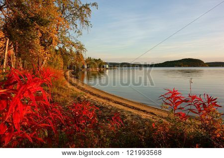 autumn colors (ruska/ inari lake, finnish lapland