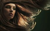 Beautiful lady with long brown hair poster