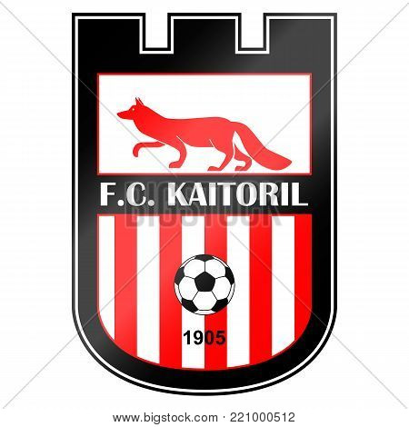 Football team logo. It is fictitious name. Here can be name of your team.