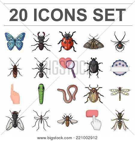 Different kinds of insects cartoon icons in set collection for design. Insect arthropod vector symbol stock  illustration.