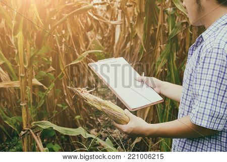 farmer man agronomy research problem or issues of agriculture.