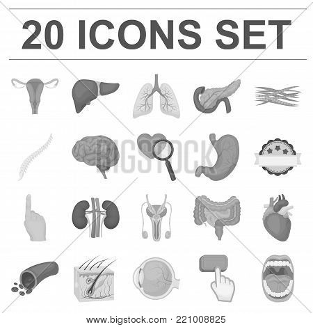 Internal organs of a human monochrome icons in set collection for design. Anatomy and medicine vector symbol stock  illustration.