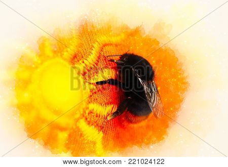 Bumble bee sitting on a bright orange cloth with sun pattern and softly blurred watercolor background