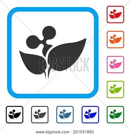 Ripple Startup Sprout icon. Flat gray iconic symbol inside a blue rounded rectangle. Black, gray, green, blue, red, orange color additional versions of Ripple Startup Sprout vector.