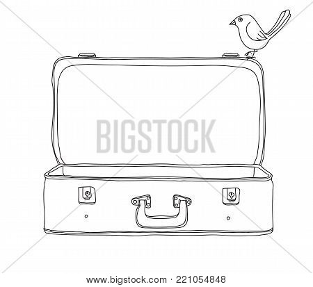 vintage Suitcase and cute bird Storage Luggage Empty and open hand drawn vector line art illustration