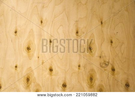 Natural Woody Background Of Light Wood With Curls And Curls On The Surface