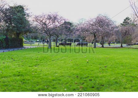 DUBLIN, IRELAND - January 6th, 2018: Saint Stephen's Green park in Dublin city centre on a calm, overcast and cold winter day