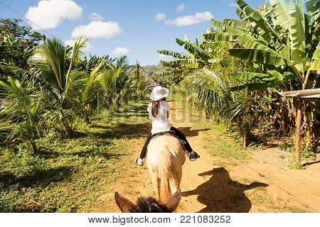 Tourist in riding horse between banana plantations in the Vinales Valley (Cuba)
