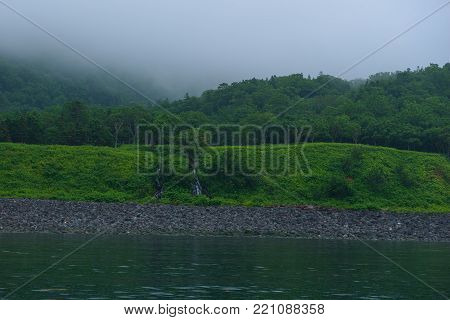 Green forest grounds with a small water fall on the Shiretoko Peninsula, seen from the Sea of Okhotsk, Hokkaido, Japan