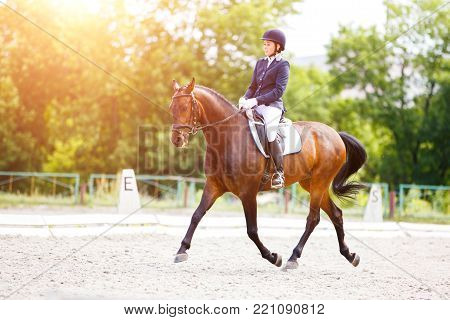 Young rider woman on her bay horse on advanced test dressage competition at sunny day