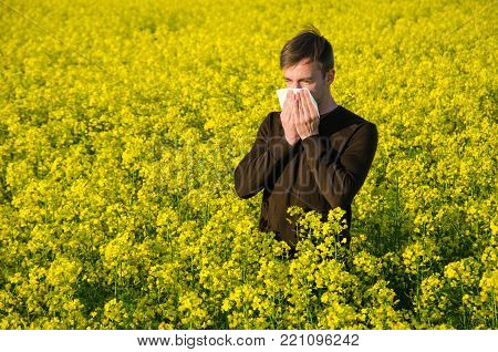 A Young Man In A Rapeseed Yellow Field With A Handkerchief Suffers From An Allergy.