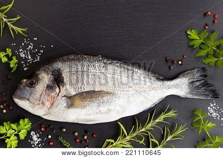 Dorada fish (gilt-head bream) with herbs and spices on a dark background with copy space. Dorada, rosemary, thyme, salt, pepper, parsley.