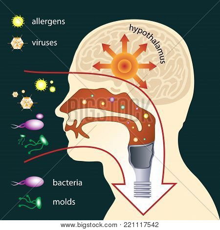 Scheme of penetration of parasites into the human body through respiratory system. The mucous membrane acts as the first line of defense. Medical illustration