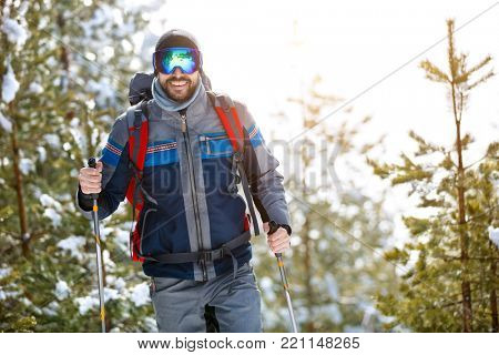 Male hiker hiking with sticks in nature