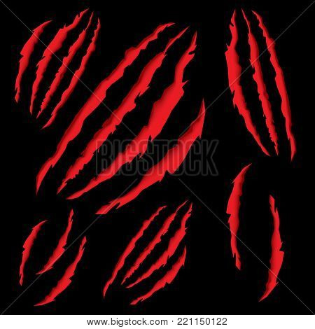 Animal Claws Scratching. Tiger or Bear Paw Scratching on Black Background.