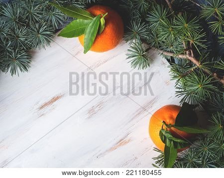 Winter tangerines frame on white rustic wooden board with spruce branches