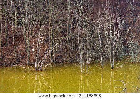 Pollution Of A Lake With Contaminated Water From A Copper Mine